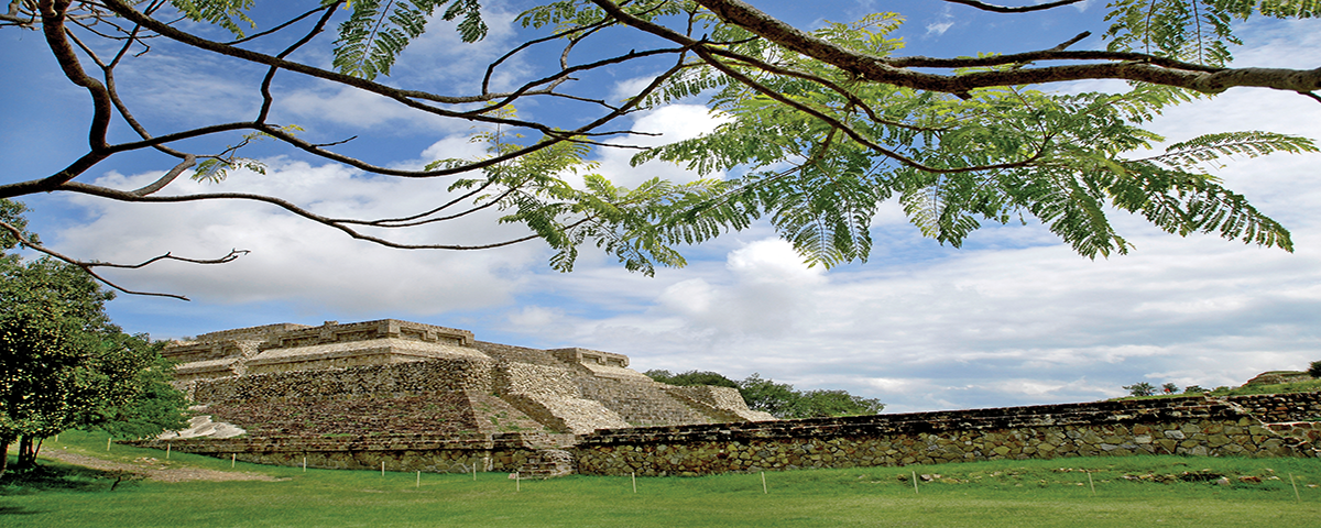 Explore the Kingdom of Monte Albán in Mexico