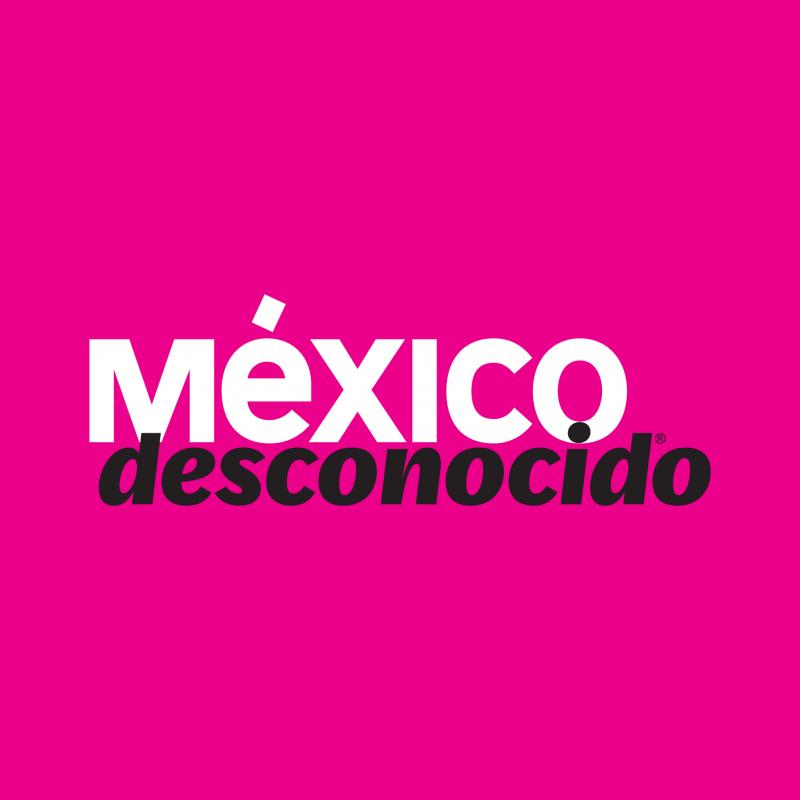Calaveras De Azúcar Significado Y Origen De Esta Tradición México