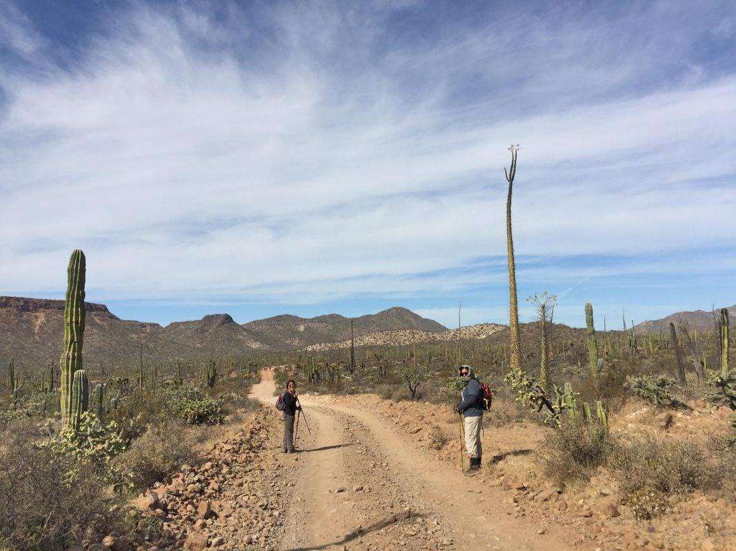 Vive la caminata de costa a costa en Baja California
