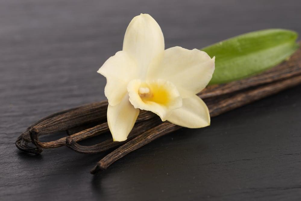 La leyenda de la vainilla, así nació esta flor